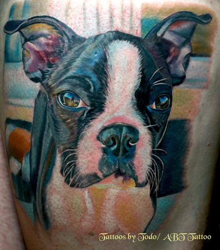 Tattoos - Boston Terrior Portrait - 57382