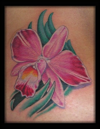 Tattoos - Cattleya Orchid - 42414