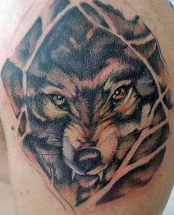 Wolf Tattoos on Paradise Tattoo Gathering   Tattoos   Nature Animal Wildlife   Wolf In