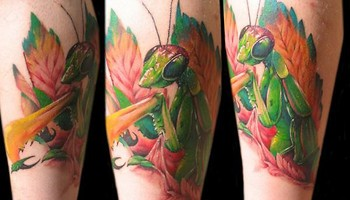 Alex De Pase - Mantis Tattoo