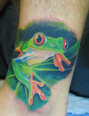 Tree Frog Tattoos on Tree Frog Tattoo Tree Frog Tattoo Me Getting My Tattoo Tree Frog Frog
