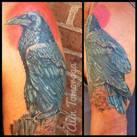 Tattoos - Blue Raven - 95915