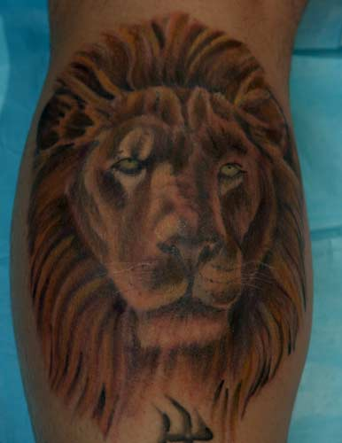 Lion king of the jungle tattoo - photo#5
