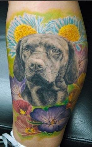 Andy Engel - Dog Portrait