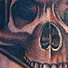Tattoos - Skull on hand - 35080