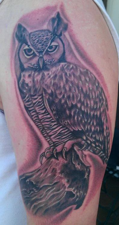 Scott grosjean black and grey portrait of owl tattoo
