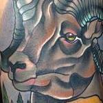 Tattoos - Traditional color mountain sheep, with mountain scenery tattoo. Gary Dunn Art Junkies Tattoo  - 101505