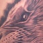 Tattoos - Realistic black and gray female lion tattoo, Scott Grosjean Art Junkies Tattoo  - 108676