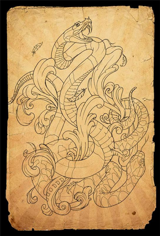 Gallery For gt Snake Tattoo Outline