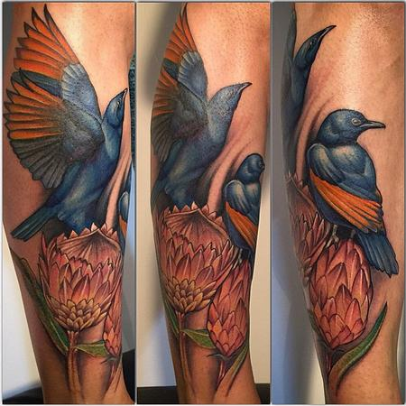 Tattoos - Starlings and Proteas - 104212