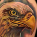 Tattoos - Eagle - 74135
