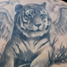 Tattoos - Tiger with Wings - 67279