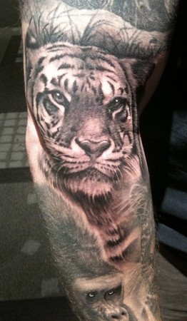Tattoos - Tiger - 47393