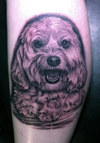 Tattoos - Dog in basket - 51574