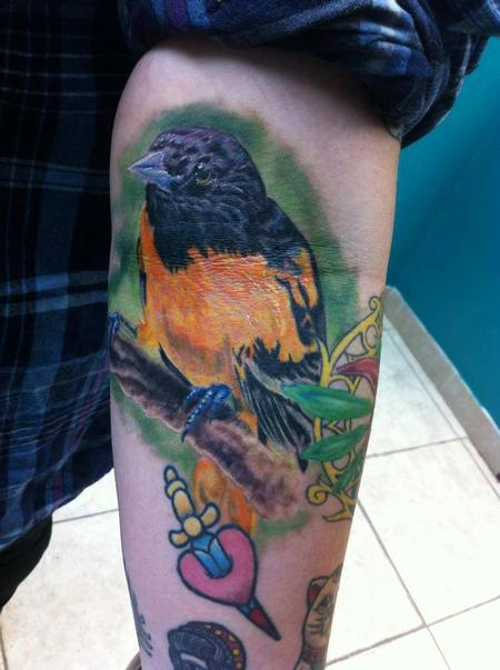 In-progress Oriole Bird Tattoo Design Thumbnail