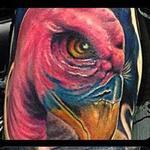 Tattoos - Buzzard and Skull Half Sleeve by Chad Miskimon - 101555