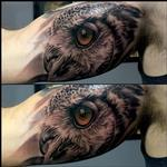 Tattoos - Owl Inner Arm - 122402