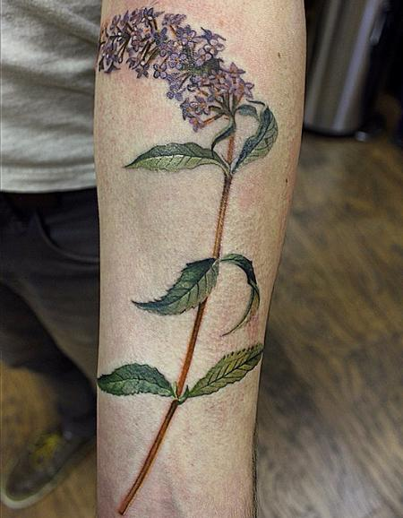Tattoos - Butterfly Bush - 99245