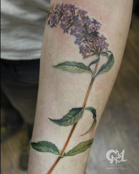 Tattoos - Butterfly Bush Tattoo  - 124860