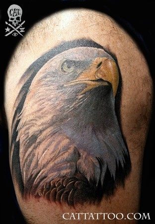 Cat Tattoo : Tattoos : Realistic : Eagle