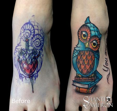 Shanti - Owl on Books Cover Up