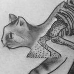 Tattoos - Skeletal Cat - 126756