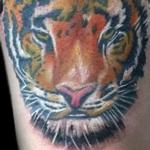 Tattoos - Tiger - 127085
