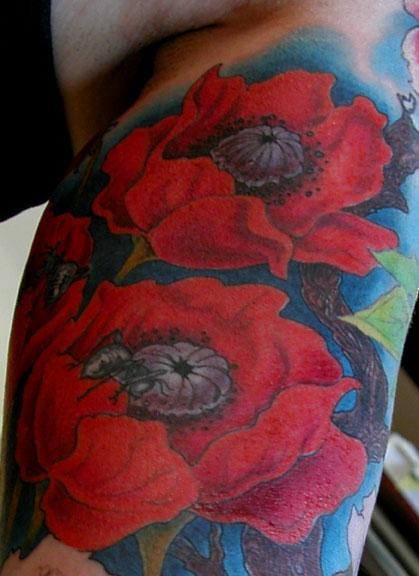 Chris Dingwell - POPPIES!!