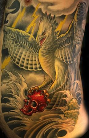 Cory Norris - harpy eagle