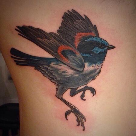 Tattoos - Blue wren bird tattoo - 84452
