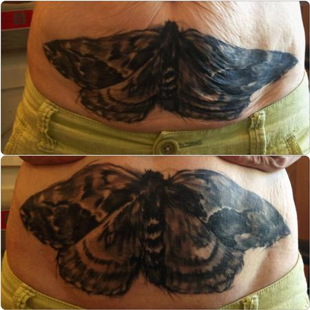Tattoos - moth black and grey tattoo - 84489