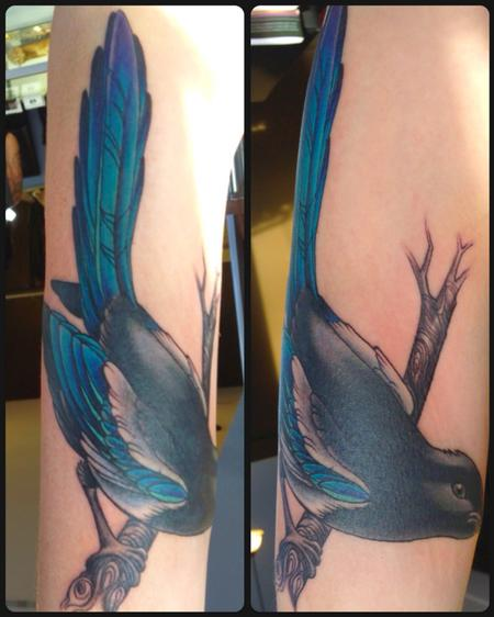 Tattoos - bird color tattoo - 84491