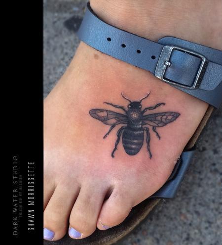 Shawn Morrissette - Honey Bee