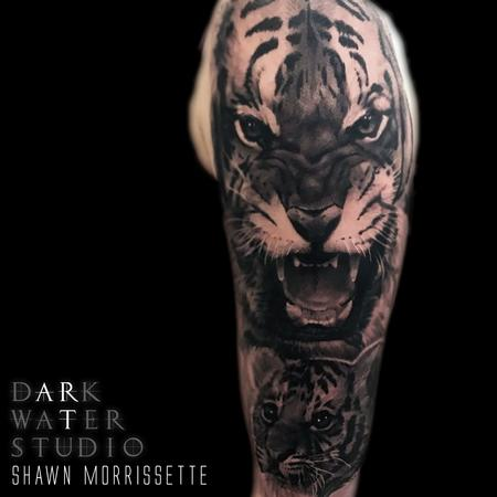 Tigers Design Thumbnail
