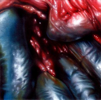 Nick Baxter - entrails