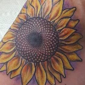 Tattoos - Color Sunflower Tattoo - 130033