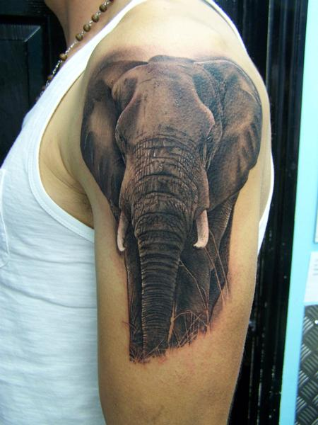Tattoos - Realistic Elephant Tattoo - 92176