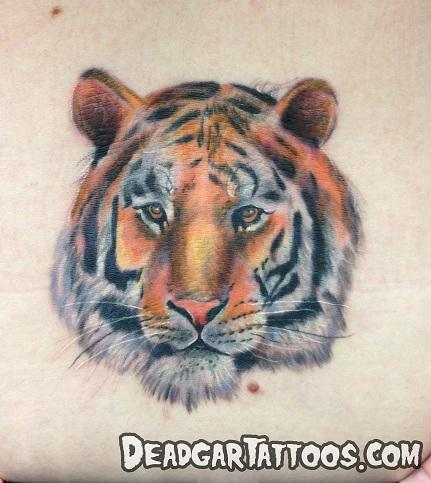 Tattoos - Tiger Tattoo - 70226