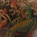 PEACOCK Tattoo Design Thumbnail