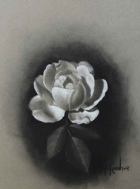 Tattoos - White rose on paper - 78952