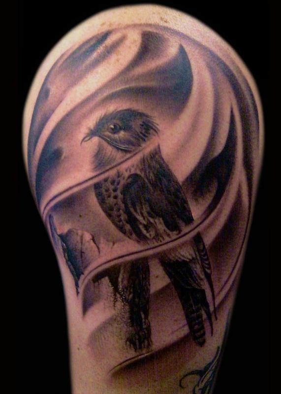 Francisco Sanchez - bird