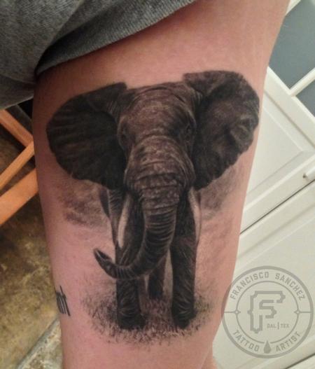realistic elephant tattoo by Francisco Sanchez : Tattoos