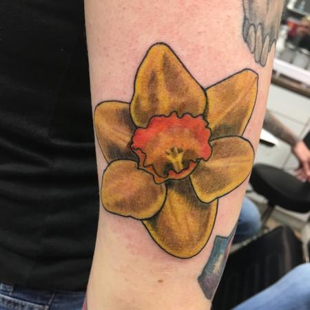 Katlyn Pogorzelski - Daffodil