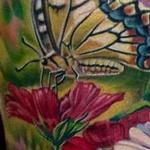 Tattoos - Butterfly/Flower Half Sleeve In Progress - 100524
