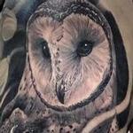 Tattoos - Owl & Chrysanthemum  - 113837