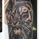 Tiger Coverup Tattoo Design Thumbnail