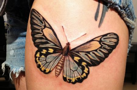 Tattoos - Butterfly - 66405