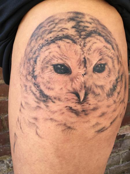 In progress partially healed owl Tattoo Design Thumbnail