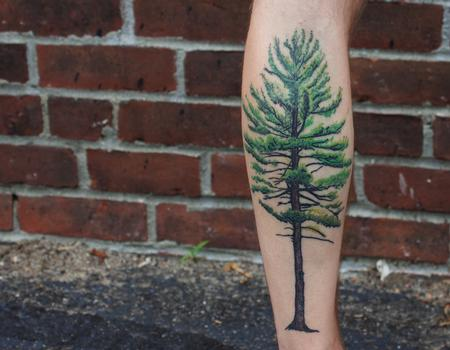 Tattoos - Tree tattoo on Kyle. Healed - 128611