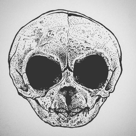 Tattoos - Rhesus Monkey Baby Skull ink drawing - 125654